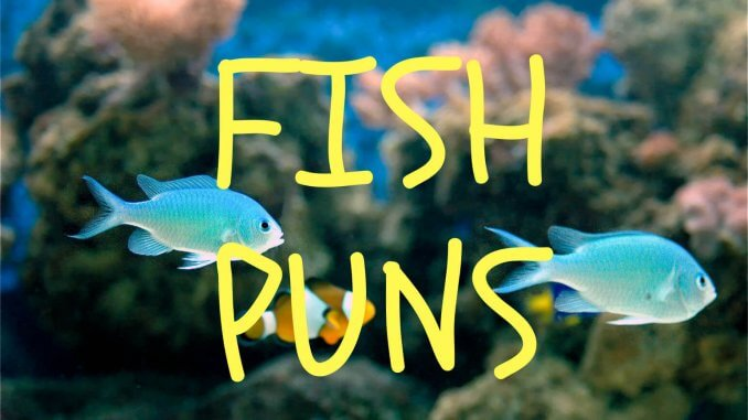 The Ultimate Fish Puns Collection Banner