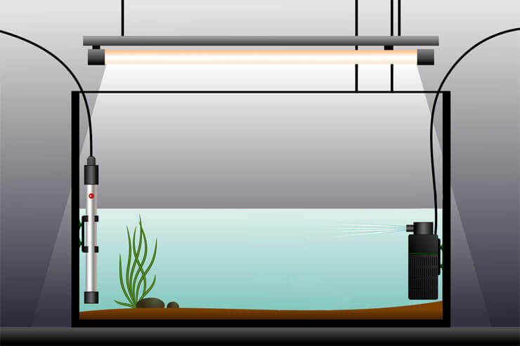 Best Aquarium Heaters The Ultimate Guide To Picking