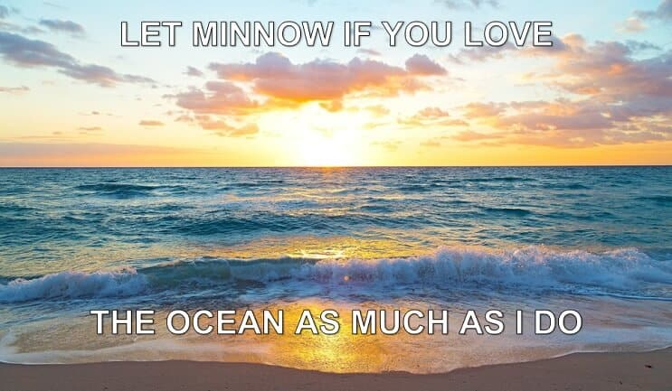 Let Minnow