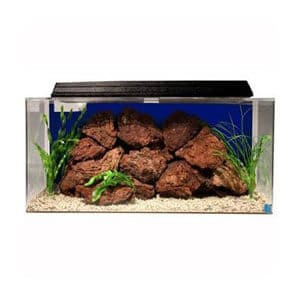 Best 50 Gallon Starter Kit