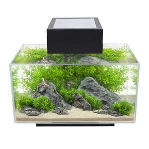 Stylish 6 Gallon Tank