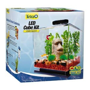 Tetra Cube Shaped Aquarium