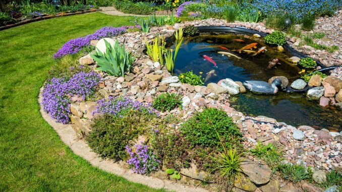 What Is A Koi Pond And How To Build Your Own (Best Setup Ideas) Banner