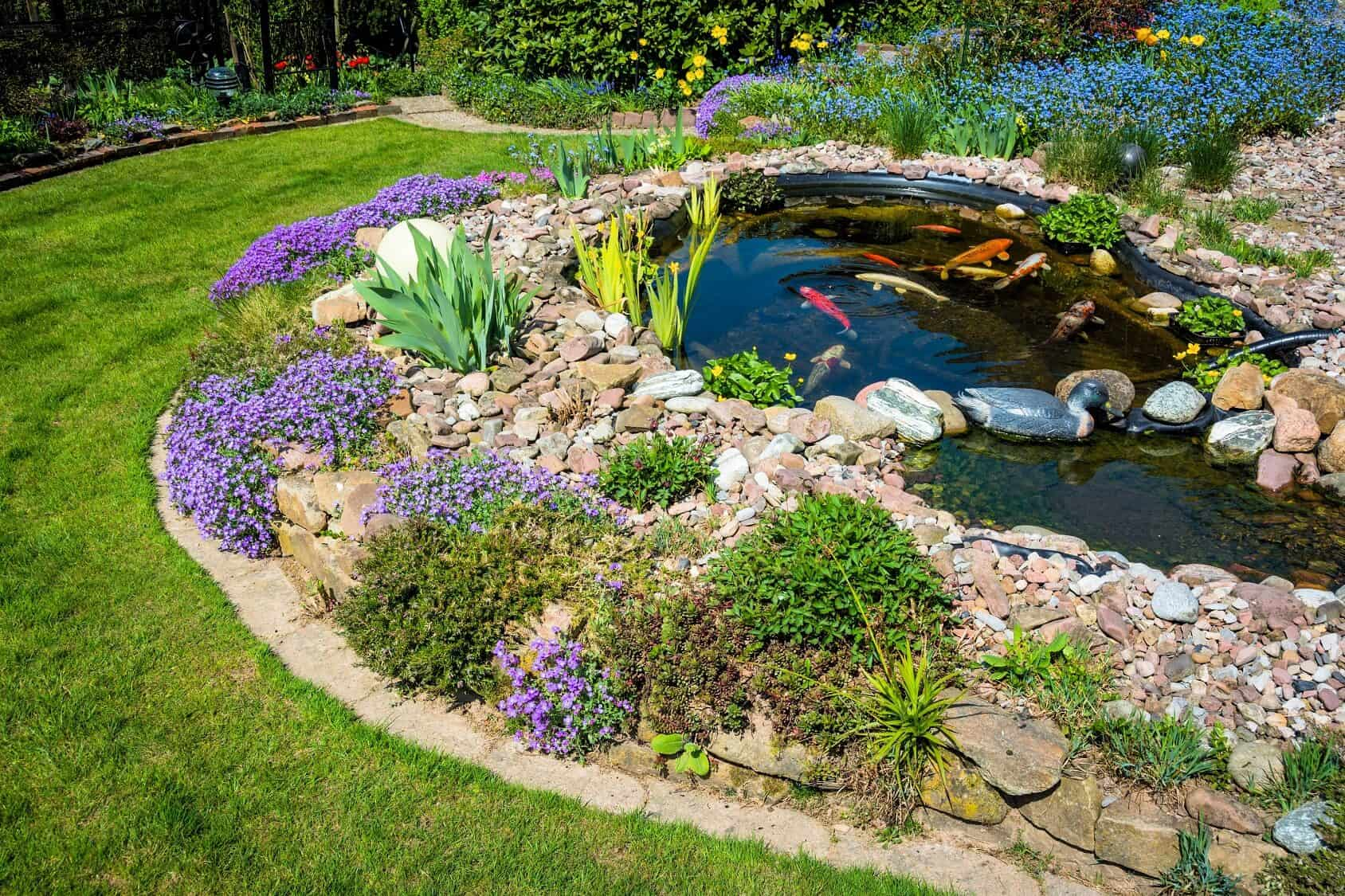 What Is A Koi Pond And How To Build Your Own Best Setup Ideas Fishkeeping World