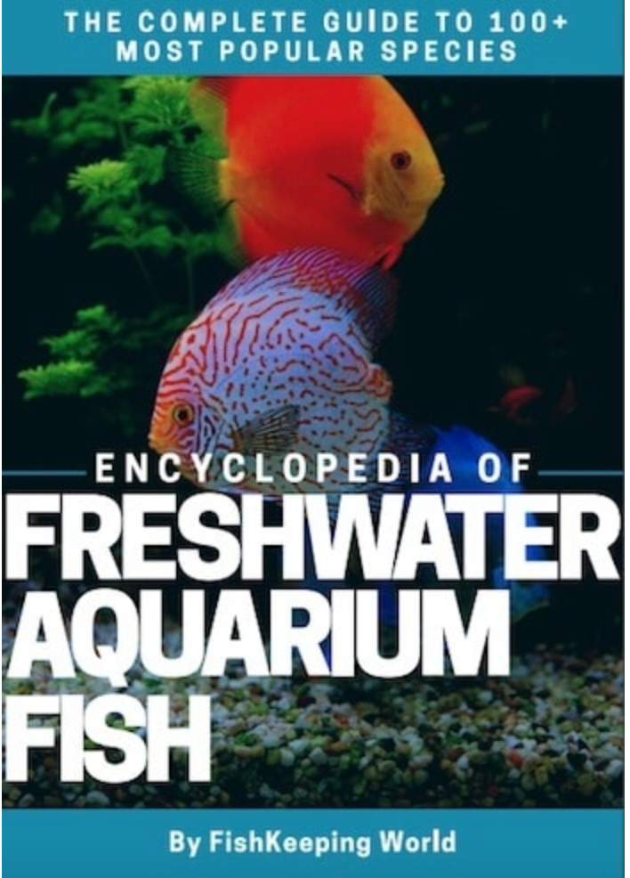 Freshwater Aquarium Fish Encyclopedia